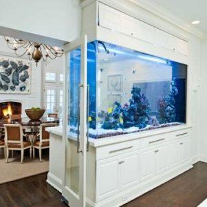 aquarium 14