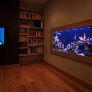 aquarium 15
