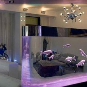 aquarium 18