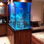 aquarium 21