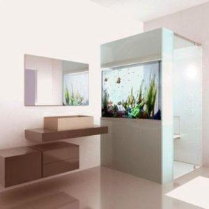 aquarium 24