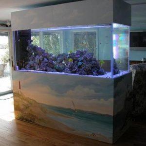 aquarium 37