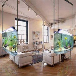 aquarium 38