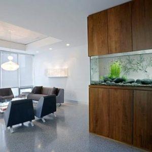 aquarium 39