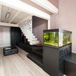 aquarium 42