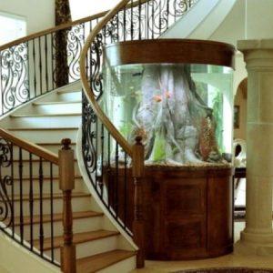 aquarium 47